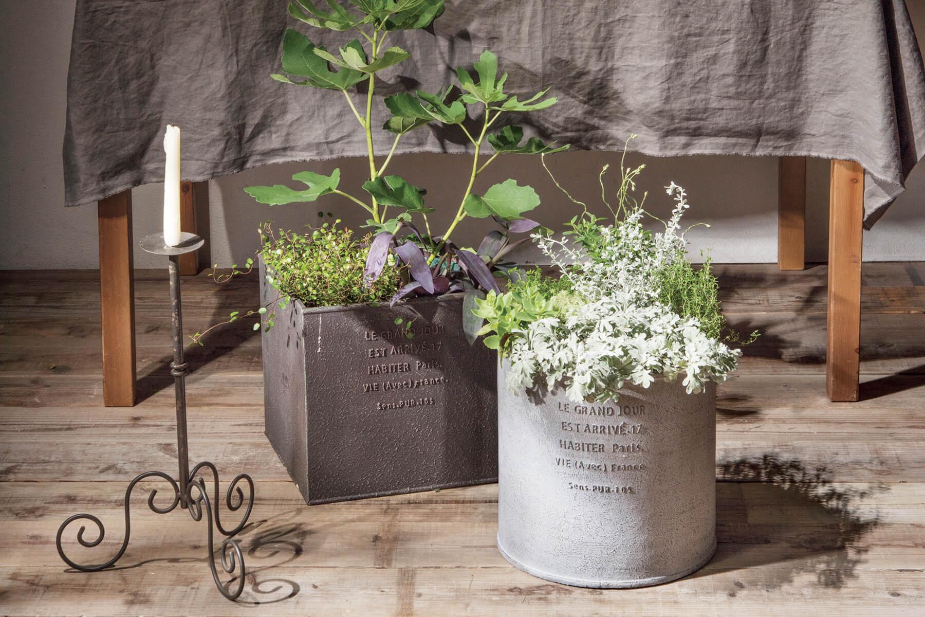 グラスファイバーの植木鉢